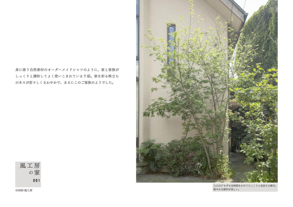 身に添う自然素材のオーダーメイドシャツのように、家と家族がしっくりと調和してよく使いこまれているT邸。家を彩る株立ちの木々が若々しくさわやかで、まさにこのご家族のようでした。 (cp10) 入口のアオダモは時間をかけてじっくりと成長する樹木。 軽やかな樹形が美しい。